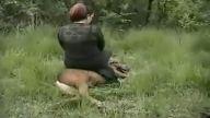 Hayvan istismarı kamerada