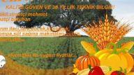 afyon karahisar çulfa tarım&ziraii ilaç&tohum&peyz