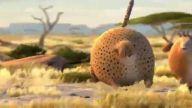 Balon hayvanlar vahşi yaşam