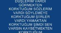 serİk 07