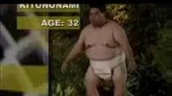 sumo vs orangutan