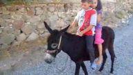 ömerler köyü polatlı yaz tatili