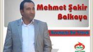 Mehmet Şakir Balkaya ~ Kocaman Bir Yürek