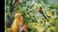 bruce springsteen - secret garden