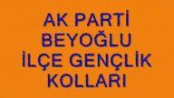 Ak Parti Beyoğlu kongre danışma meclisi slaytı