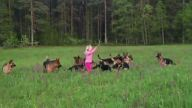 Kız çocuğunun 15 kurt köpeğiyle neşeli oyunu