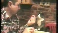 Yiyeceğini kedi ile paylaşan güzel insan