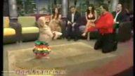 samba dansı yapan köpek