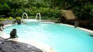 maymunların havuz sefası