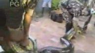 anakonda adamın eleni yakalıyor kurtarabilene aşk