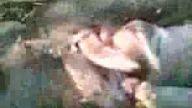 samsunlu davulcu ramazan ve av gurubu
