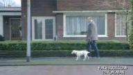 Kendini Araba Sanan Köpek