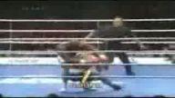k1 dövüş videosu