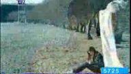 Ebru Gündeş-ÖlümsüzAşklar