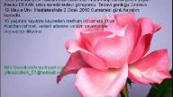 MERHUM RECEP ERKAN HOCA EFENDİDEN MEVLİD-İ ŞERİF