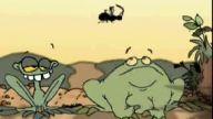 Aç Gözlü Kurbağa!