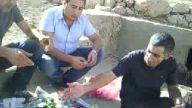 kurdek delaw