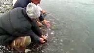 balık bırakma yarışı