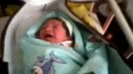 hamza bebek