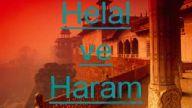 HELAL HARAM HAKKINDA,IYI ANLASILA