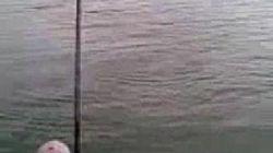 manavgat ırmagı