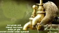 Mehmed Aksu-Seviyorum Seni