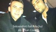 Faili Meçhul - Ali Erkan Cover