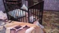 Bebeğin Uyanıklığına Şapka Çıkartılır
