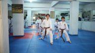 Karate nedir?