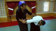 Aikido dan seviyeleri ve anlamları nelerdir?