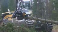 Ağaç Kesme Aracının Müthiş Çalışma Tekniği