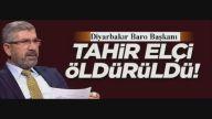 Tahir Elçi 'PKK terör örgütü değildir' demişti
