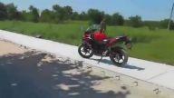 Asabi Maymun Sürücüye Saldırdı