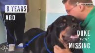 Kaybolan Köpeklerin Aileleriyle Buluşma Anları