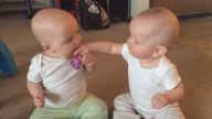 İkiz Bebeklerin Kıyasıya Emzik Mücadelesi