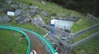 İsviçre Dağlarında Eğlencenin Dibini Doyasıya Yaşatan Mono Coaster