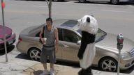 Panda Dehşet Saçtı - Hayrettin