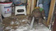Kar Tulumu İçinde Tavuk ve Keçi Dostlarını Ziyaret Eden Maymun