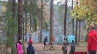 Rus Usulü Ağaç Kesimi