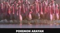Pokemon Kovalayan Pokemon Go Oyuncuları
