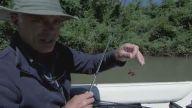 İnsan Dişli Bir Garip Balık Yakalayan Adam