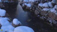 Donmuş Gölete Kuru Buz Atılırsa Ne Olur?