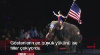 146 yıllık sirk kapılarını kapatıyor
