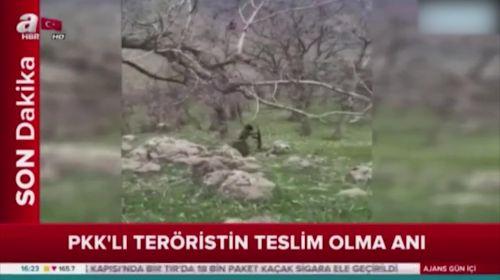 PKK'lı teröristin teslim olma anı kamerada